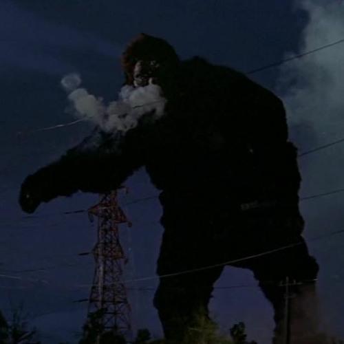 Pacific Yew's avatar