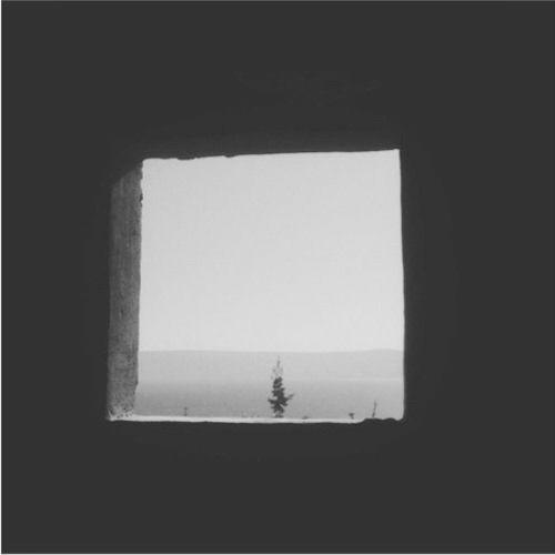 PRZ's avatar