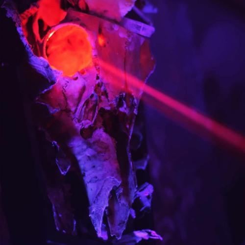 skerror's avatar