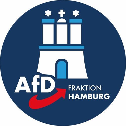 AfD-Fraktion Hamburg's avatar