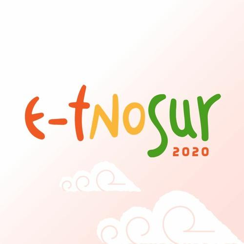 ETNOSUR Festival's avatar
