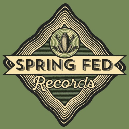 Spring Fed Records's avatar