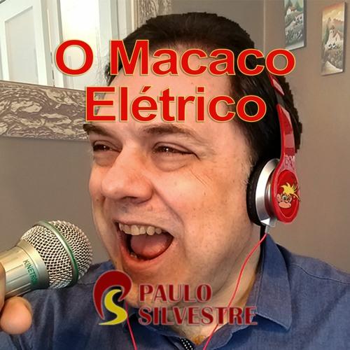 Paulo Silvestre's avatar