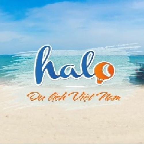 Halo Travel's avatar
