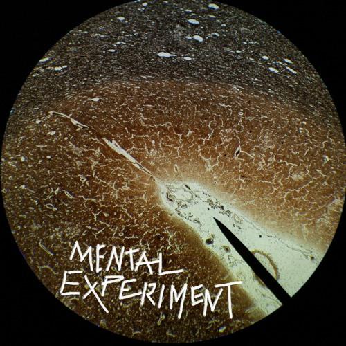 Mental Experiment's avatar
