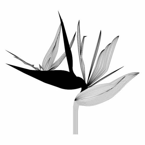 Virescence Records's avatar