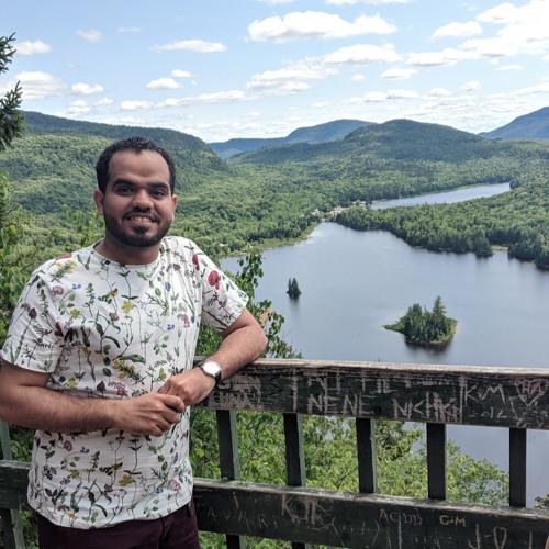 Hamzah Almajeedi's avatar