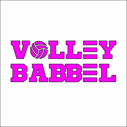Volleybabbel.nl - Interviews met volleybaltrainers's avatar