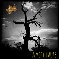 A Voix Haute - Yannick Debain