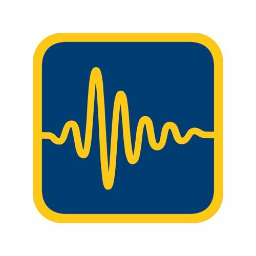 SoundStorm Music Education Agency's avatar