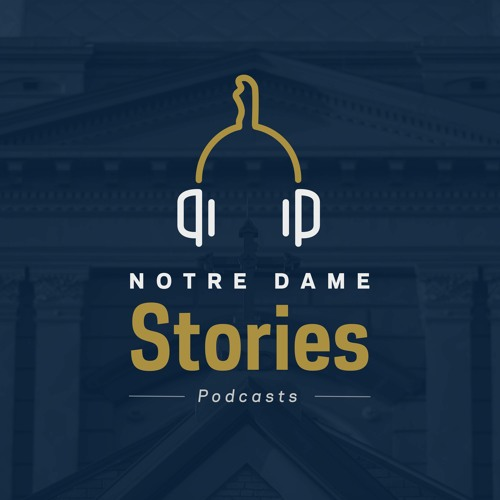 Notre Dame Stories's avatar