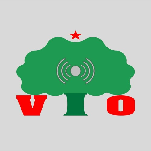 Independent Oromia's avatar