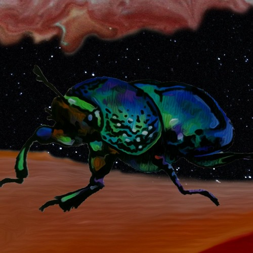 mr. käfer's avatar