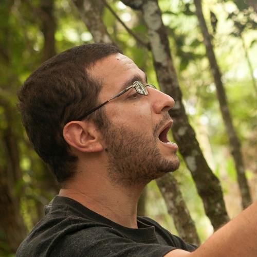 Ricardo Passos's avatar