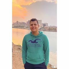 Mohamed Awadeen
