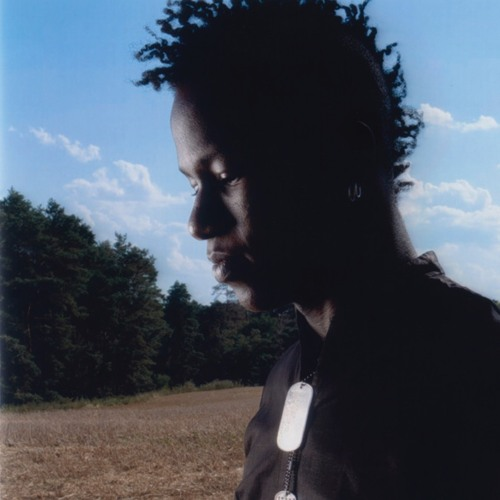 LA Timpa's avatar