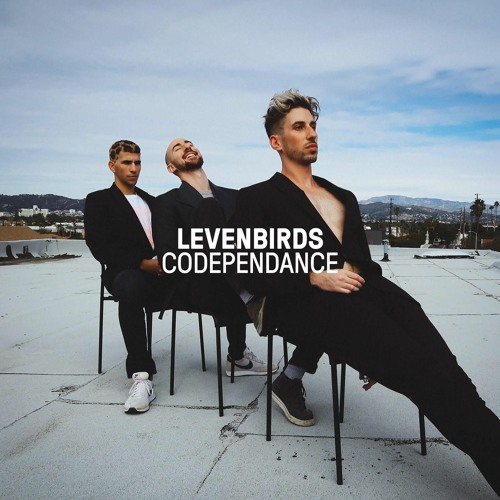 Levenbirds's avatar