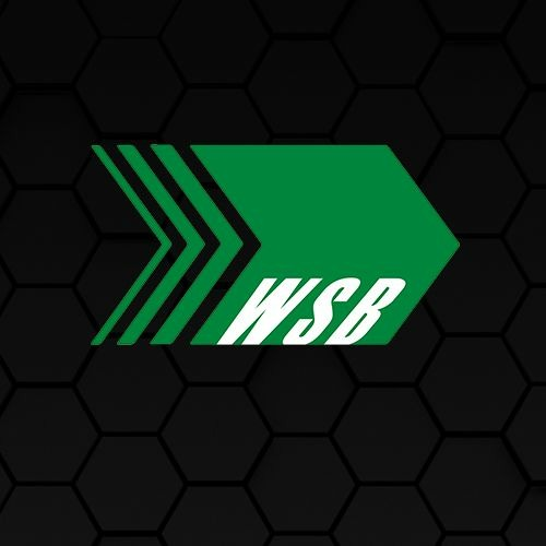 World System Builder's avatar
