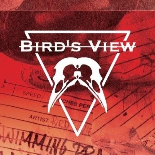 Bird's View's avatar