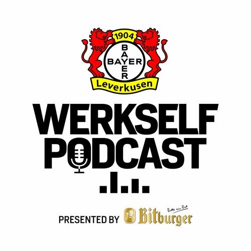 Bayer 04 Leverkusen's avatar
