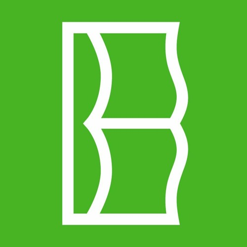 BRI Breslov's avatar