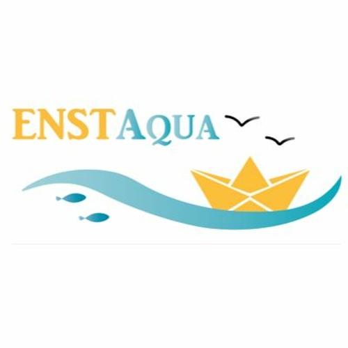 ENSTAqua's avatar