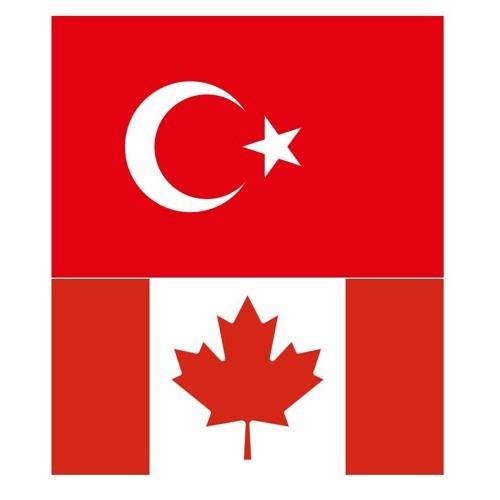 Toronto Bilgi's avatar