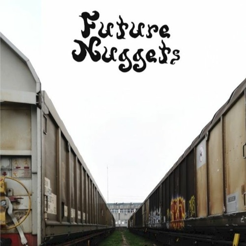 future nuggets's avatar
