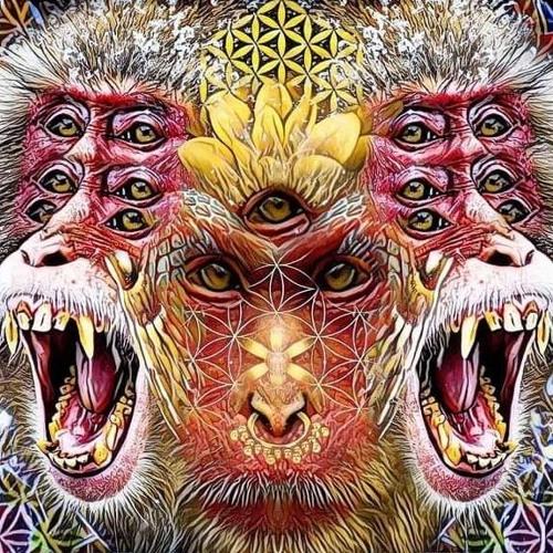 sheg's avatar