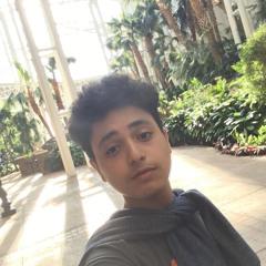 Beshoy Emad