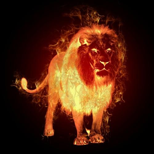 lil Lion Fire's avatar