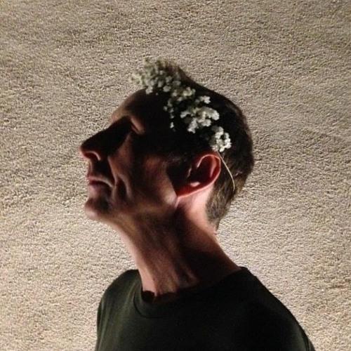 L'AMATEUR's avatar