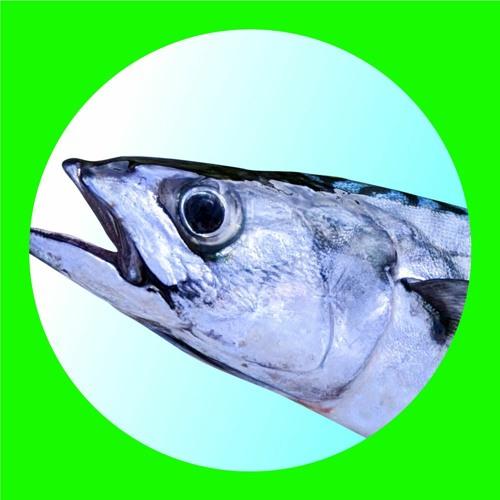 SKILL MTG's avatar