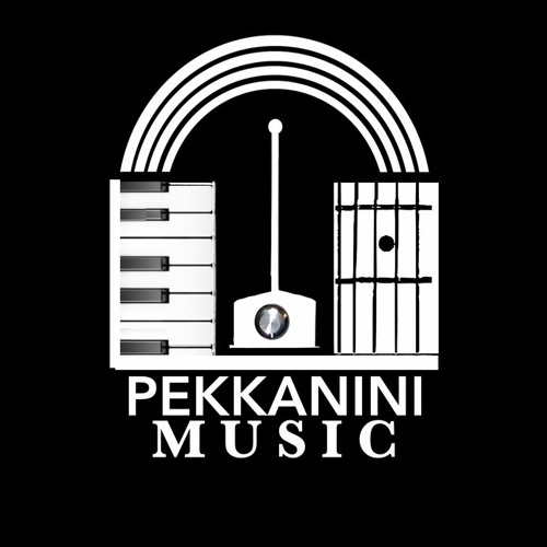 PEKKANINI - theremins and more!'s avatar