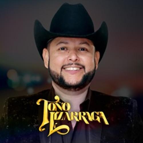 Toño Lizarraga's avatar
