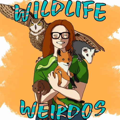 Wildlife Weirdos's avatar
