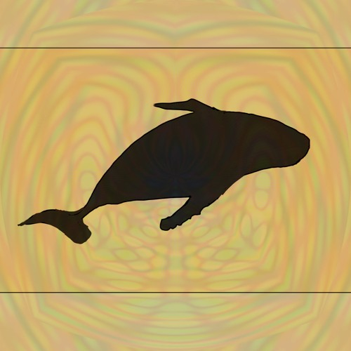 ancient whale's avatar