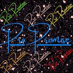 PRO PROMISE