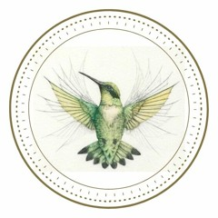 The Humming Bird Collective Podcast