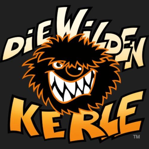 Die Wilden Kerle's avatar