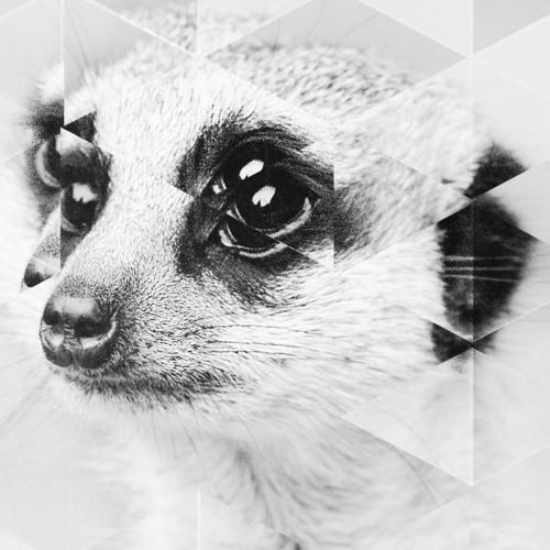 Docta's avatar