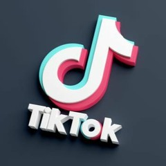 Bitch Take Off Your Panties Huh - TikTok Trend Song