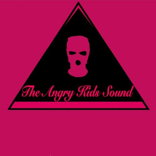 THE ANGRY KIDS SOUND's avatar