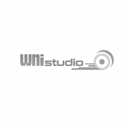 Werner Niedermeier (WNi Studio)'s avatar