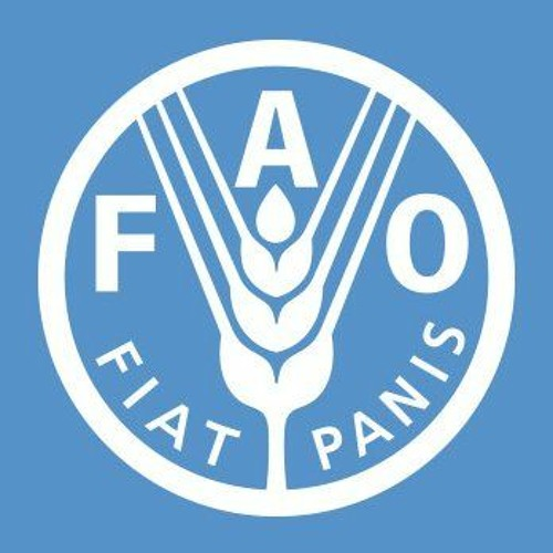 UNFAO's avatar