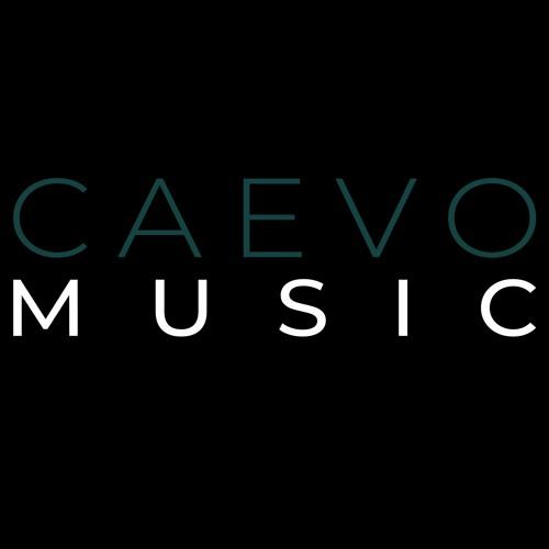 CAEVO's avatar