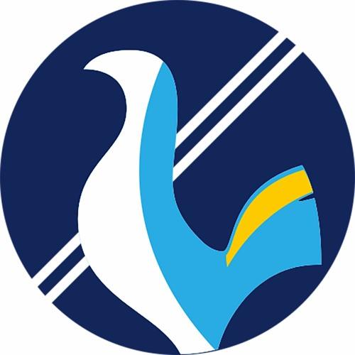 Spursmania.org's avatar