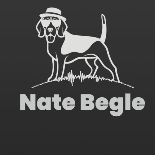 Nate Begle's avatar