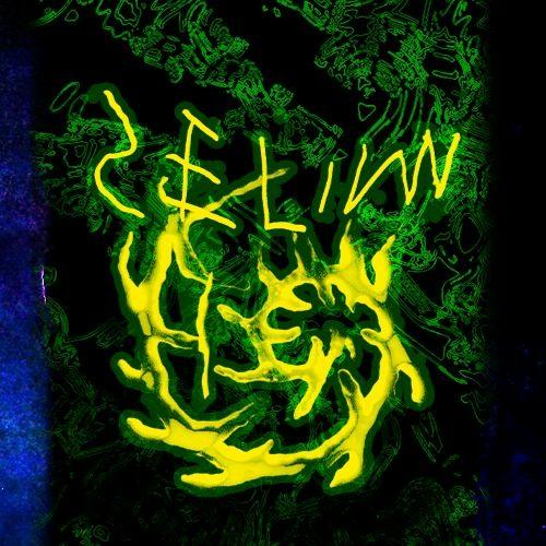 SELIM HEX✅'s avatar