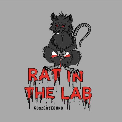 RAT IN THE LAB's avatar